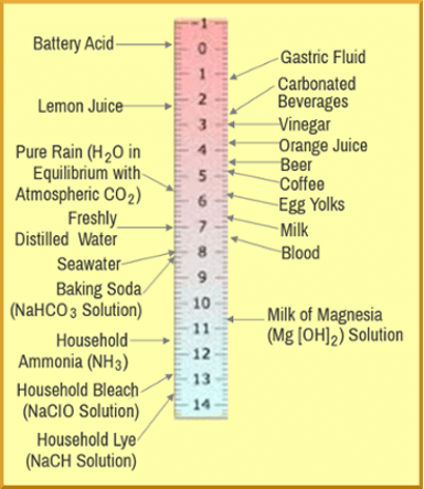 pH Food Values: pH Scale