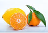 Interesting  Foods: Health for Life - Citrus Fruits