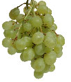 Interesting Foods: Health for Life - Grapes
