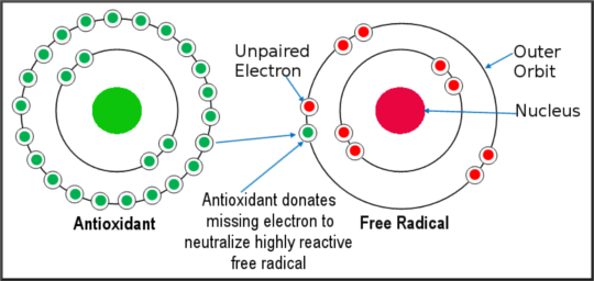 Organic or Non-Organic Food? - Part 2: Free Radicals Antioxidants