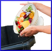 Understanding Weight Loss Basics - Introduction
